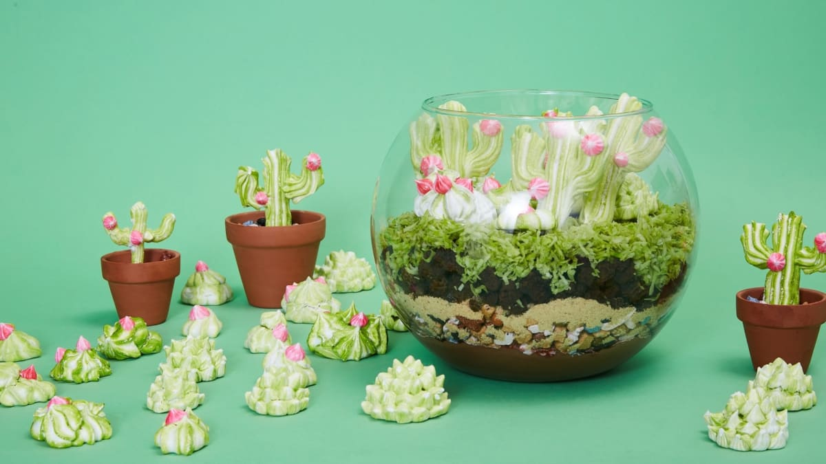 Rosie makes a fully edible Brownie Terrarium and adorable Cactus Meringues.